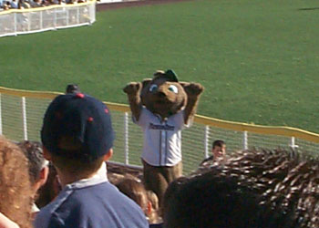The New Hampshire Fisher Cat Mascot waves to the crowd.